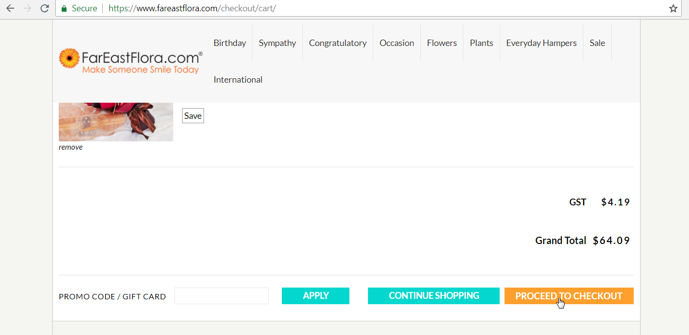 Shopping cart with a section to enter promo code.