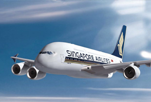 0.5% Cashback when you book Singapore Airlines flights via ShopBack today!