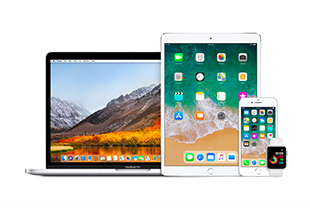 Free Standard Delivery on your Apple purchase!