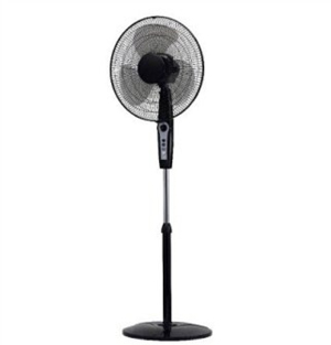 Champs Stand Fan