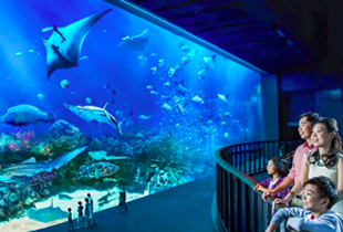 Attractions & Activity Deals in Singapore Updated Daily!