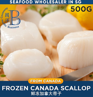 Premium Canadian Scallops