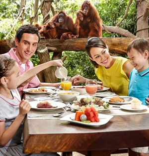 Singapore Zoo Breakfast