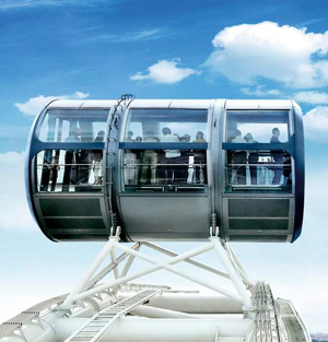 Singapore Flyer & Gardens Ticket