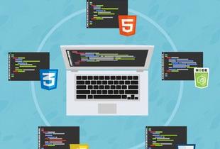 The Web Developer Bootcamp