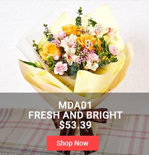 MDA01 Fresh and Bright $53.39
