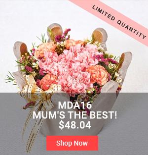 MDS16 Mum's the Best $48.04