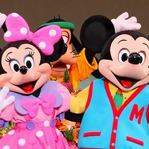 Tokyo Disneyland or DisneySea Ticket 1 Day Pass