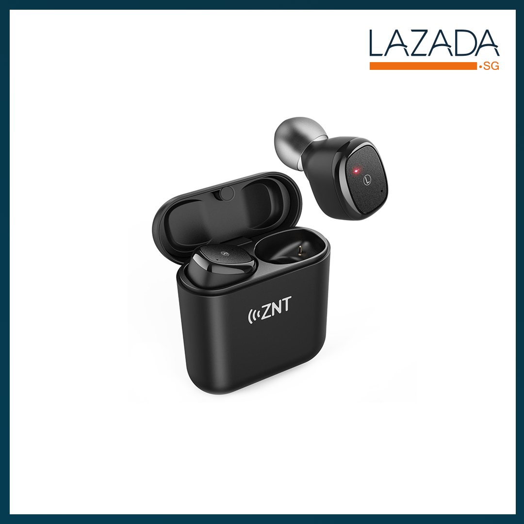 NT D06-L True Wireless Earbuds with Bluetooth 5.0 and Hi-Fi Sound Quality