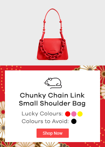 Chunky Chain Link Small Shoulder Bag