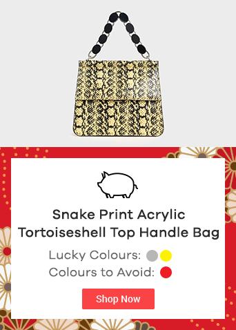 Snake Print Acrylic Tortoiseshell Top Handle Bag